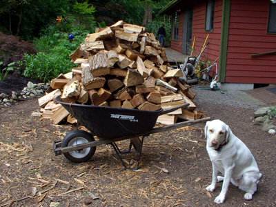 Moving The Wood