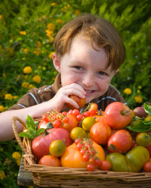 Children Who Eat Plenty of Fruits and Vegetables Less Likely to Have Stiff Arteries as Adults
