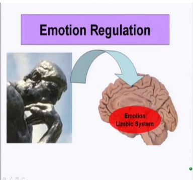 The Neuroscience of Emotions