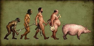 Fed Up With Obesity?