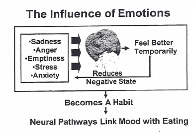 Do Your Emotions Influence What You Eat?