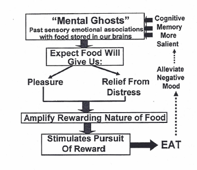How Well Do You Know Your Mental Ghosts?