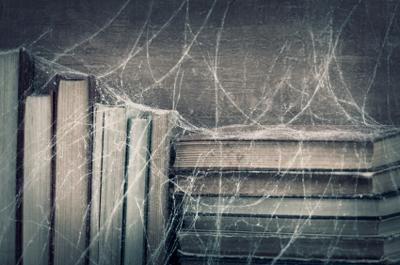 Life Is A Web of Trances