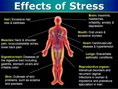 Stress Tips: Calm Your Mind, Heal Your Body