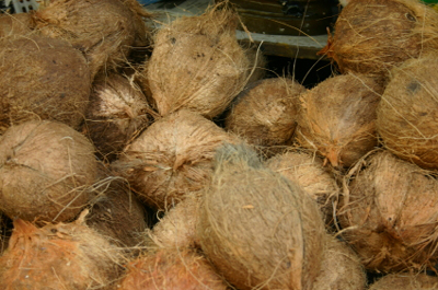Coconut Oil: Good for you or not?