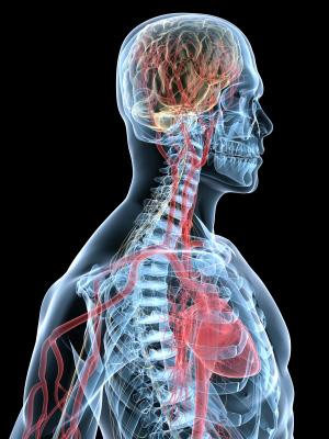 Mind body medicine gaining momentum