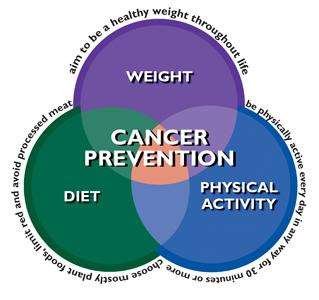 Starve cancer with a plant based diet
