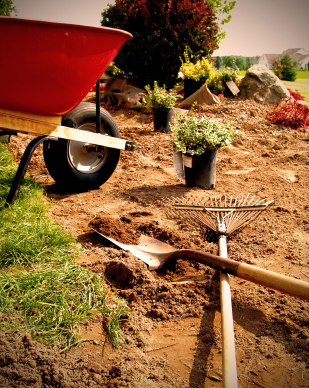 Housework and gardening are not exercise