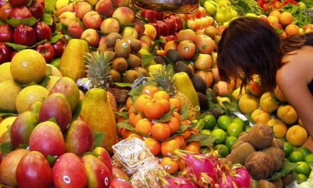 The long-term health benefits of whole plant-based food