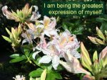 Becoming-the-Greatest-Expression-of-You-Self-hypnosis