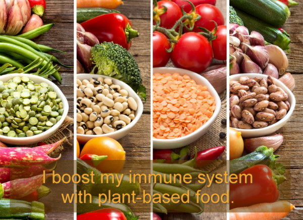 Plants and your immune system