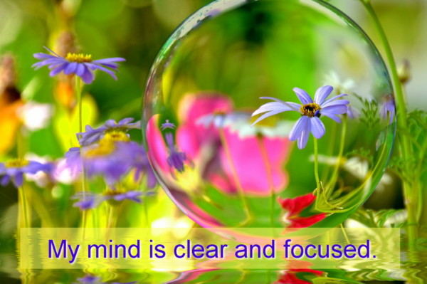 Mind enhancement center picture 9