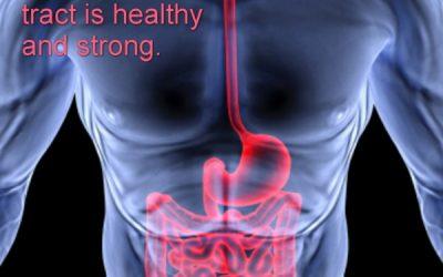 Crohn's Disease MP3 Downloads