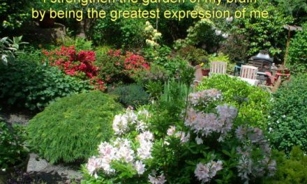 Be Mindful of what you are mindful of ~ Becoming the Greatest Expression of You