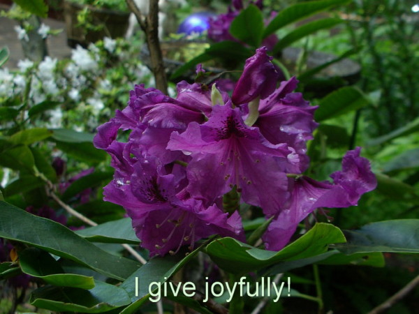 Give joyfully