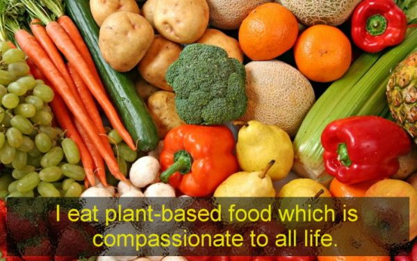 Switching to a whole food plant-based lifestyle