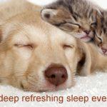 Hypnosis for sleep ~ iCanSleep #7