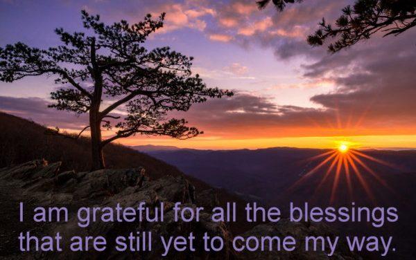 Gratitude ~ Open your eyes!