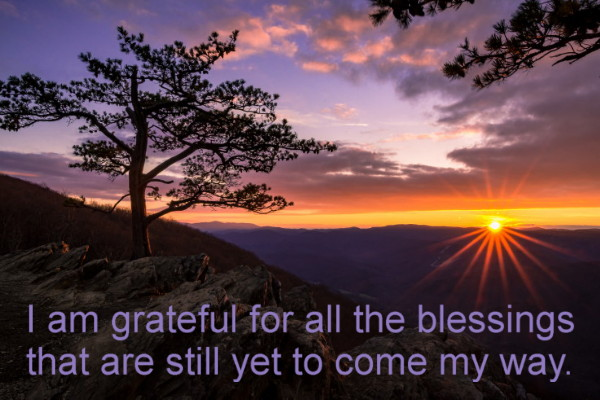 Gratitude ~ Open your eyes!