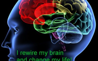 Neuroplasticity in action