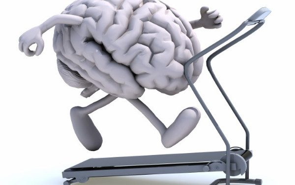 Physical exercise or brain exercise for seniors?