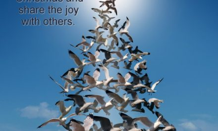 Christmas Caroling Flash Mob – The First Noel