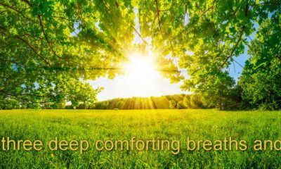 Land of Healing Comfort Hypnosis MP3 download