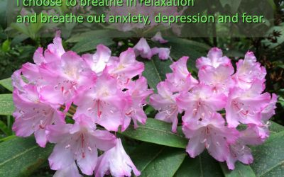 Hypnosis for anxiety, depression, and fear